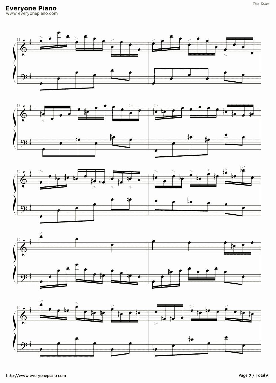 神秘的曲谱_钢琴简单曲谱