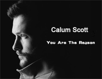 You Are The Reason-Calum Scott